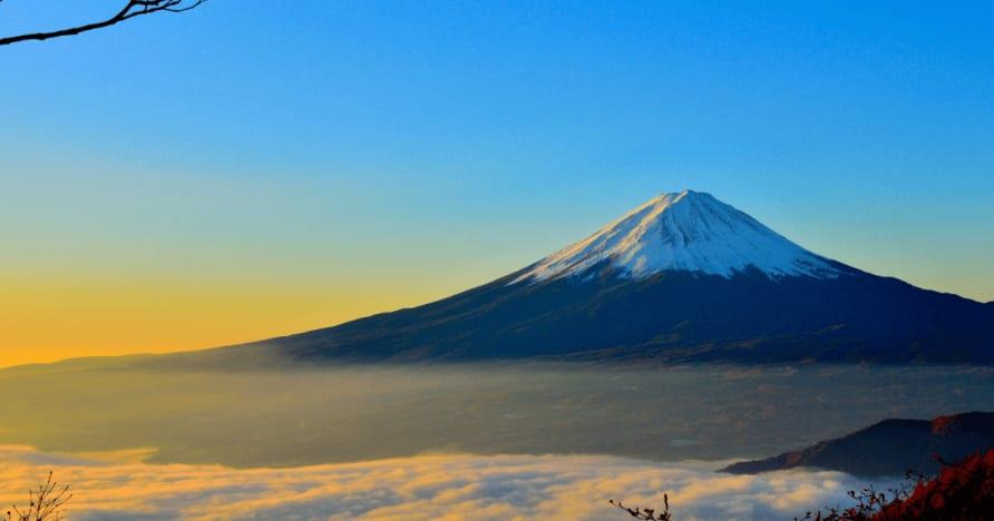 Japonsko považuje zrážkovej dane z cudzincov výhry