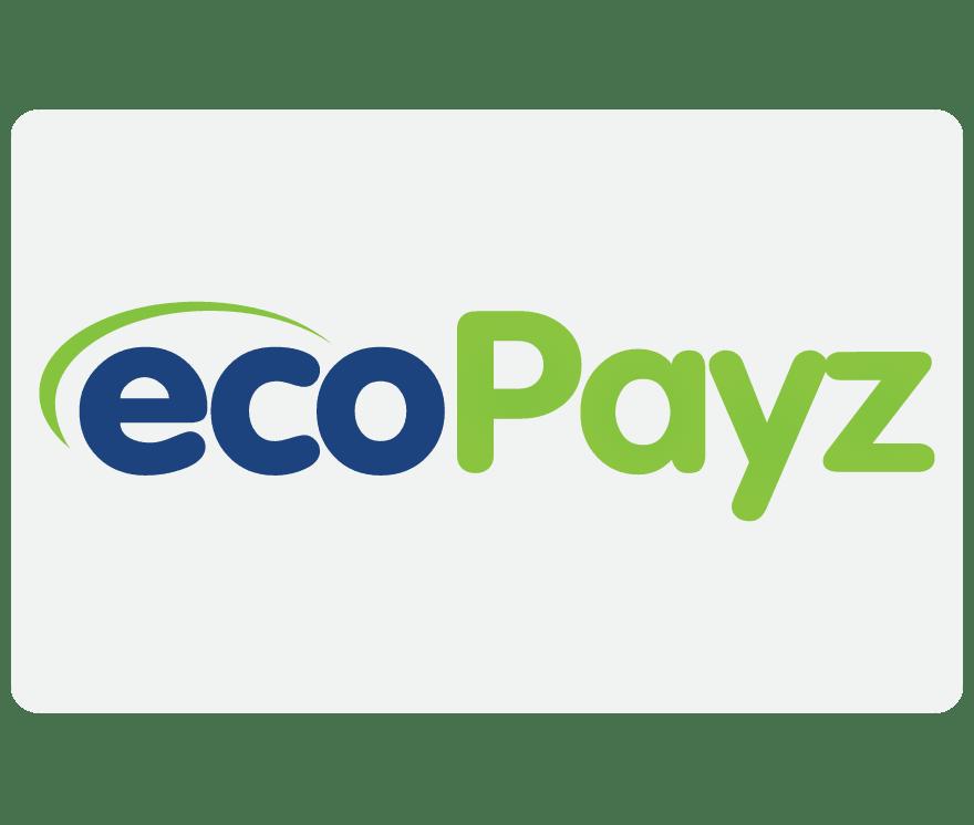 Top  EcoPayz Online Kasínos 2021 -Low Fee Deposits