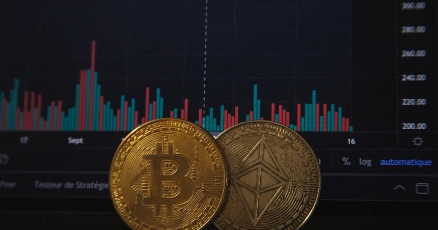 Bitcoinové hazardné hry sa zvýšia po nedávnom oznámení PayPal